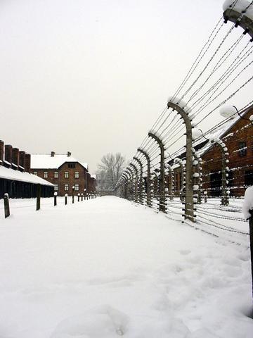 Imagen de las alambradas del campo de concentración de Auschwitz. / Wikipedia