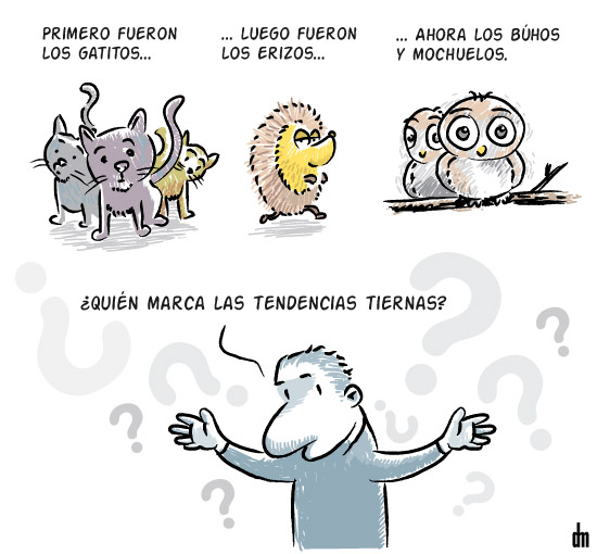 Tendencias tiernas