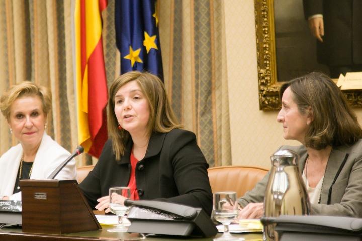 Pilar Cancela, en un momento de la constitución de la Comisión de Igualdad en el Congreso, el pasado mes de febrero. / Congreso