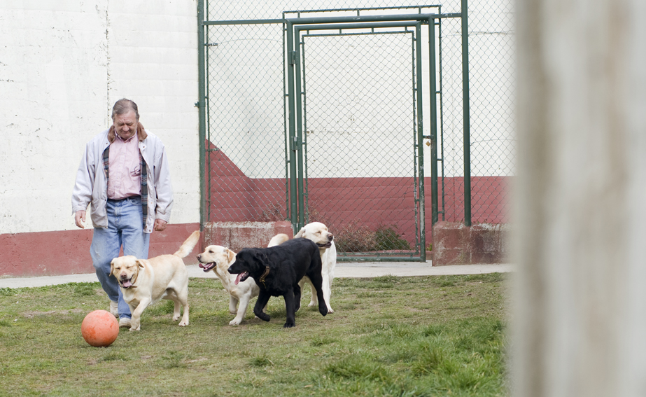 Terapias con perros en Instituciones Penitenciarias.