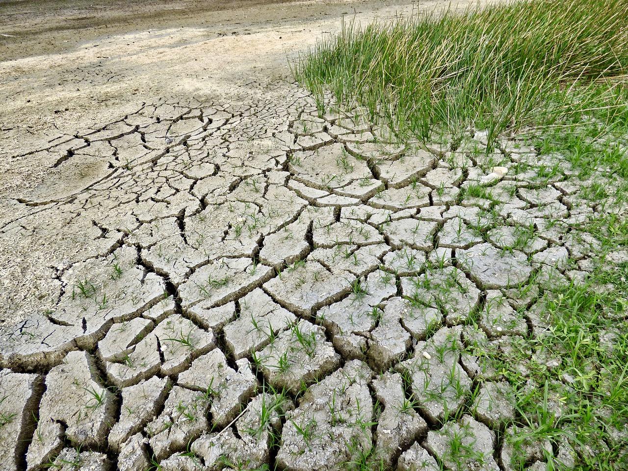 Imagen de archivo la desertificación del suelo debido al aumento de las temperaturas.