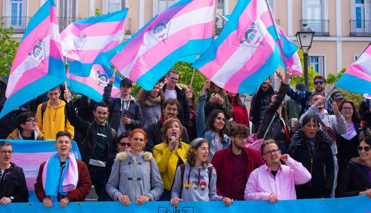 La Federación Plataforma Trans, respaldadas por cientos de profesionales, urgen al nuevo Gobierno a tramitar la Ley Trans Integral en España./ Federación Plataforma Trans (Facebook)